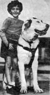 """Art loved his dog """"King Pharrah"""""""