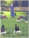 Dorothy Margaret Shaw photos